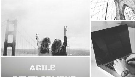 Agile Development, Agile checked